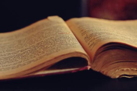 Reading. Writing. Literature History. Blogging.