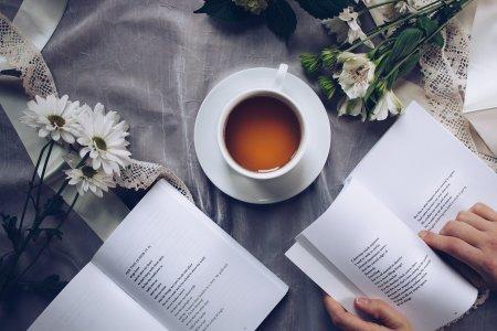 Literature. Blogging. Writing.